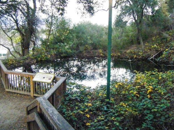 Santa Teresa Springs
