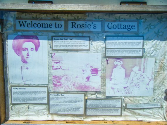 Rosie and her story