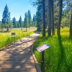 Trail Loop