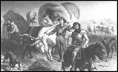 Donner Party.jpg-13130