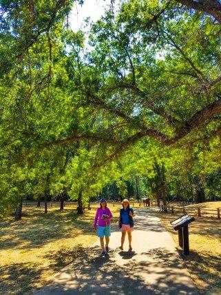 Trail around the park