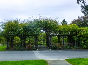 Closed Rose Garden