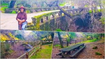 The historical bridges
