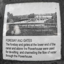 Forebay and Gates
